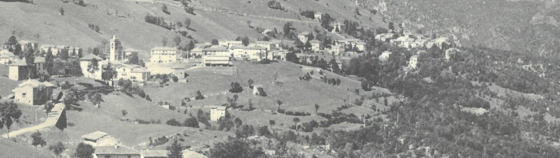dav - Primula Hotel